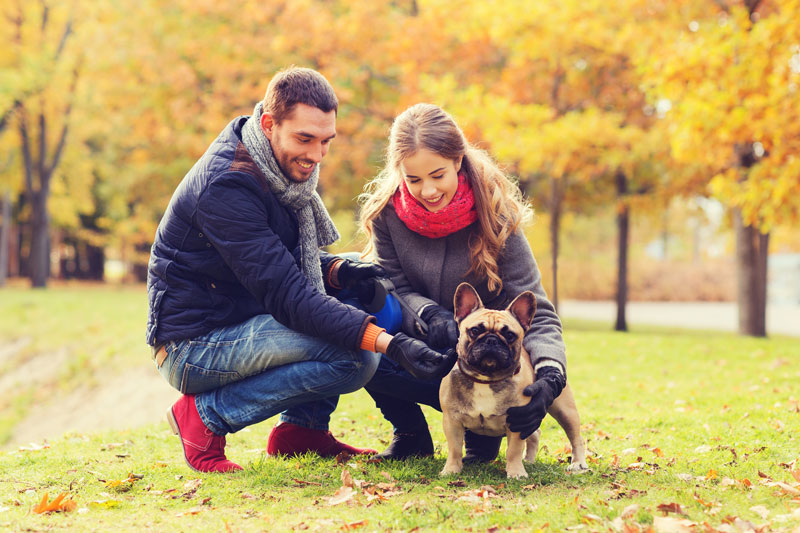 Couple with Dog at Park